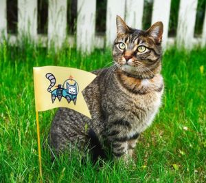 The Best Way To Get Rid Of Fleas From Your House Pets